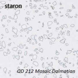 Mosaic Dalmatian